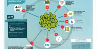 Medidas de autoprotección fronte ao risco de incendios forestais da Xunta de Galicia